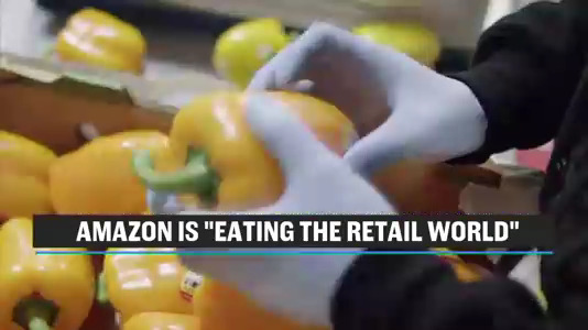 """Latest Chart Shows How Quickly Amazon is """"Eating the Retail World"""""""