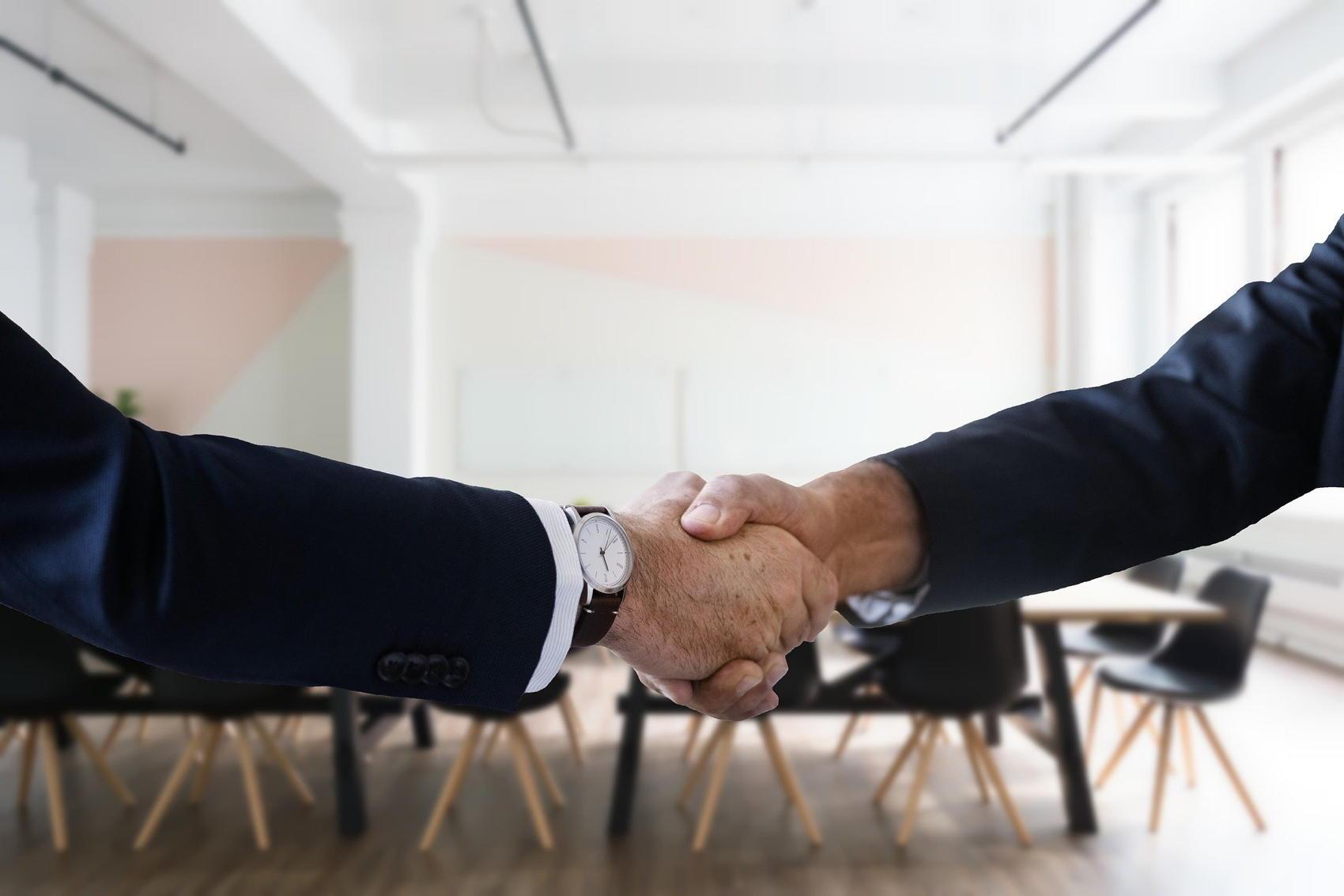 Job Interview Handshake - Image by Tumisu