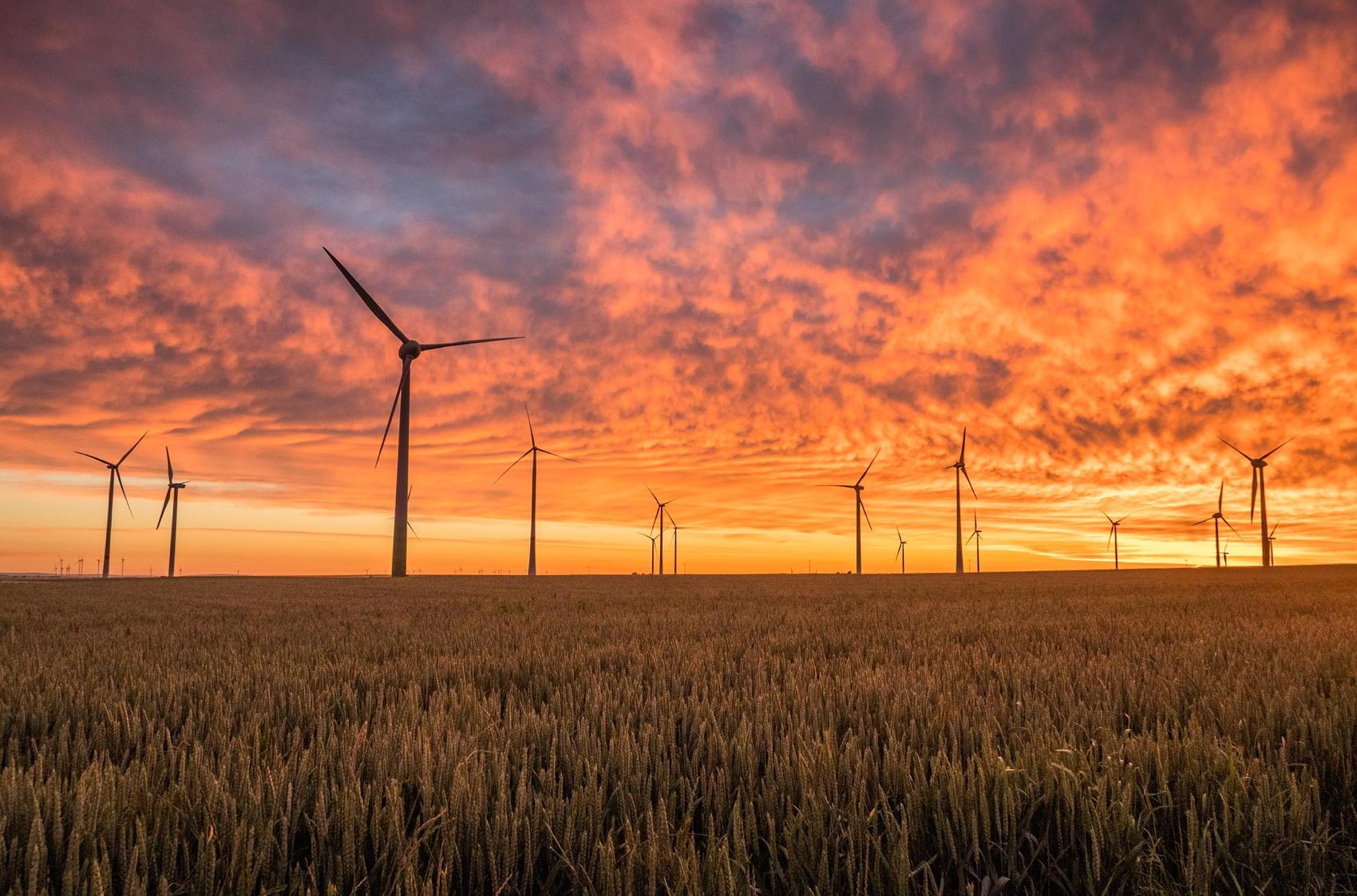 Wind Turbines - Image by Pexels