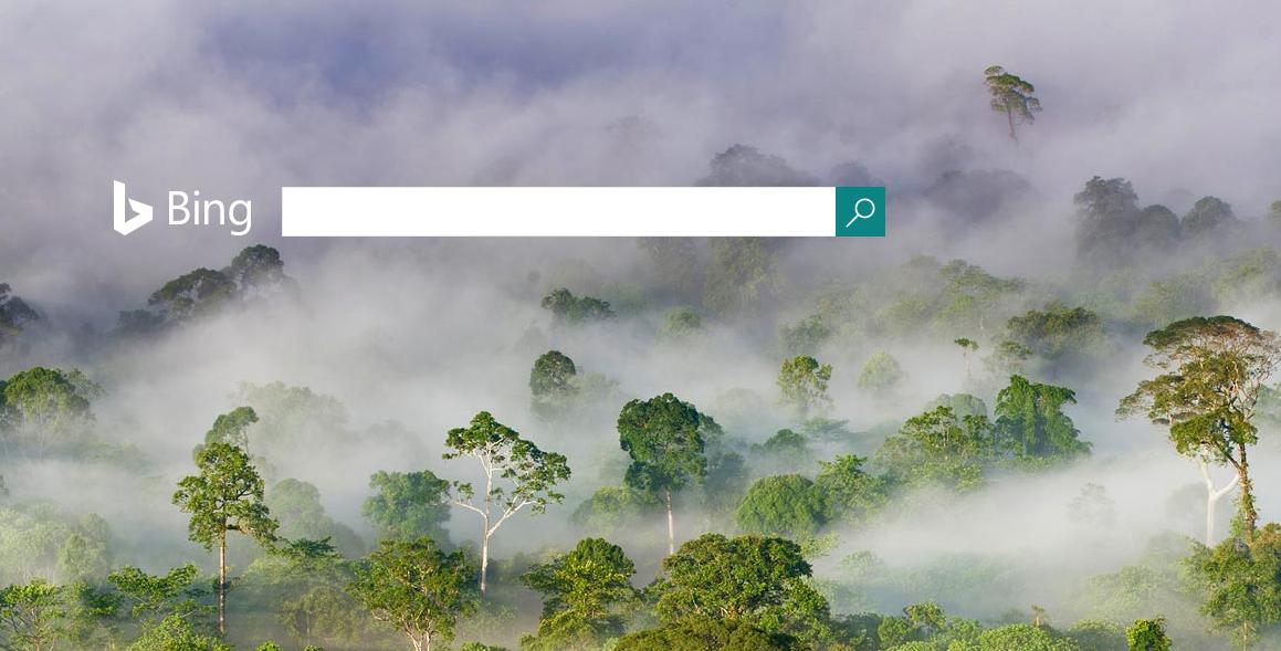 Bing Ads  Get Social Extensions For Facebook, Twitter, Instagram & Tumblr